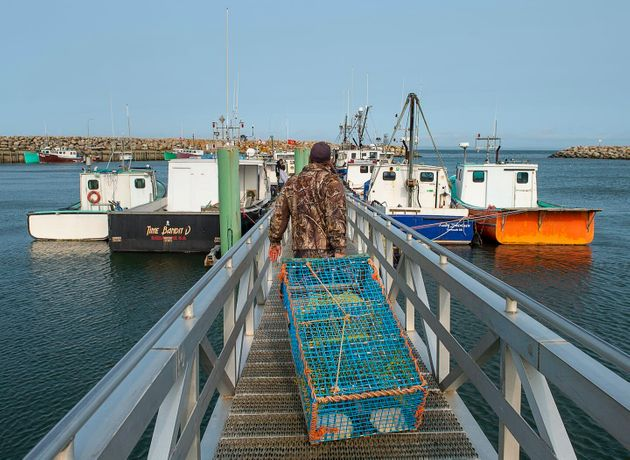 Members of the Sipekne'katik First Nation load lobster traps on the wharf in Saulnierville, N.S., in...