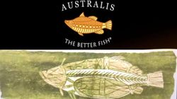 A US-Owned Barramundi Company Has An Aboriginal Art Logo. Again, Here's Why That's