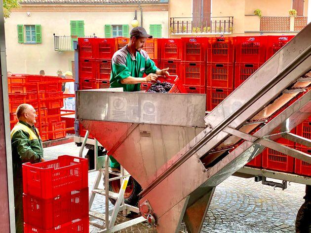 Produttori di Barbaresco, un successo di