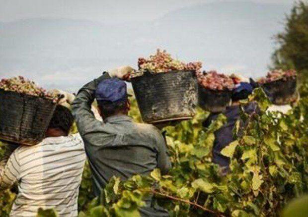 Regolarizzazione lavoratori stranieri, è ora di superare provvedimenti una