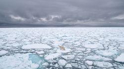 La superficie de la banquise arctique n'a jamais été aussi faible en