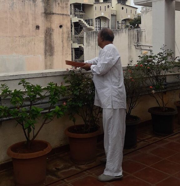 Two weeks into the lockdown, Appa began coming up to the terrace only to feed the birds.