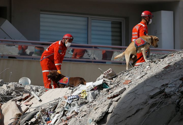 Members of rescue services with sniffer dogs search in the debris of a collapsed building for survivors in Izmir, Turkey, Sun