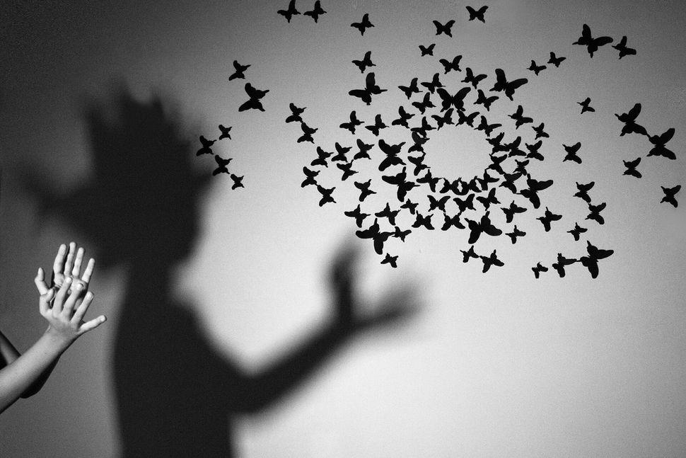 Mattia Gervasi, 'Il piccolo illusionista'