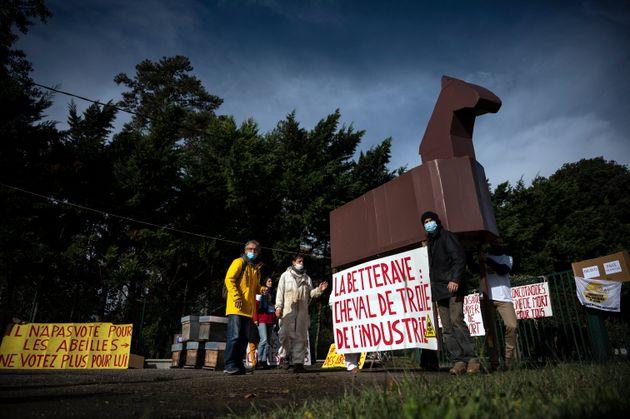 Les activistes anti-OGM et les apiculteurs tiennent une pancarte indiquant
