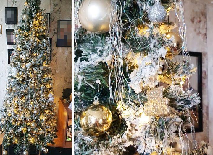 Suzy's Christmas tree is up already.