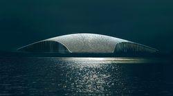 To Μουσείο Φάλαινας σε σχήμα του θηλαστικού ανοίγει το 2022 και είναι αρχιτεκτονικό