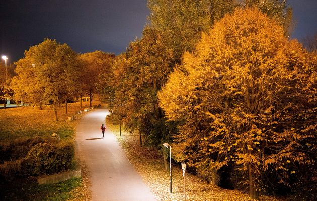 A man walks along a road at Danube Island (Donauinsel) on an autumn day in Vienna on November 12, 2020...