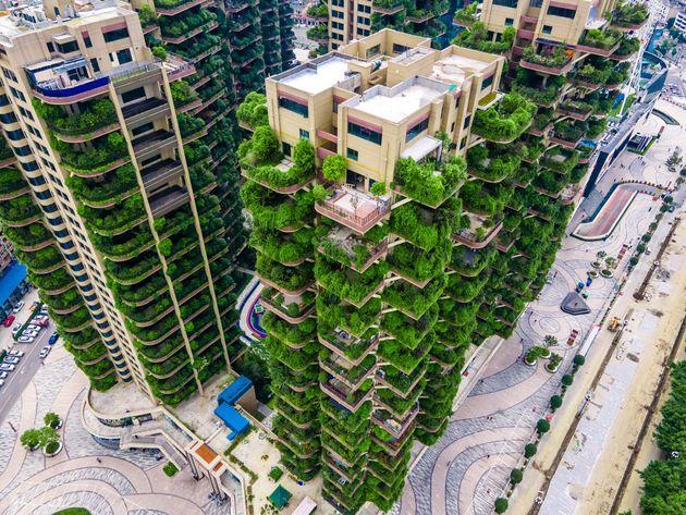 四川省成都市に建てられた「垂直森林」(Photo by VCG/VCG via Getty