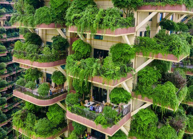 べランドから生い茂る植物(Photo by VCG/VCG via Getty