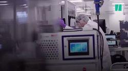 El científico español que dirige un área de la compañía Moderna pone fecha a la llegada de la vacuna a