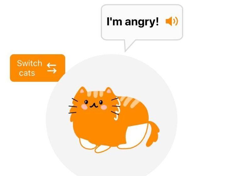 Una de las pruebas que ha hecho El HuffPost con la app. (Y sí, la gata estaba harta de nosotros).