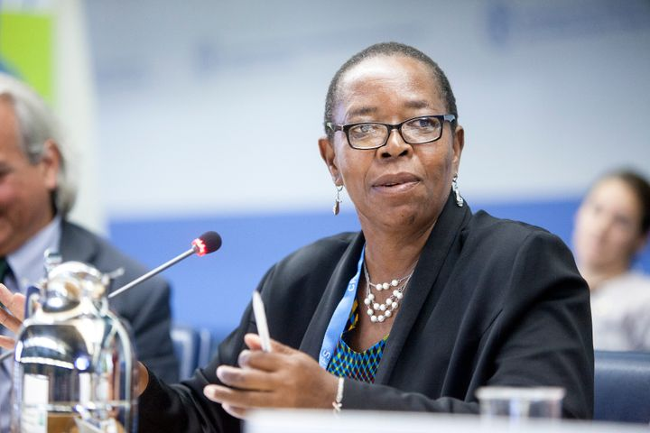 Elizabeth Mpofu speaks during a 2017 World Food Security session in Rome. Credit: ©FAO/Giulio Napolitano