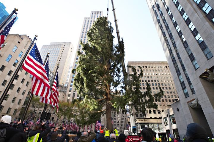 The Rockefeller Center Christmas Tree arrives at Rockefeller Plaza and is craned into place on Nov. 14, 2020, in New York Cit
