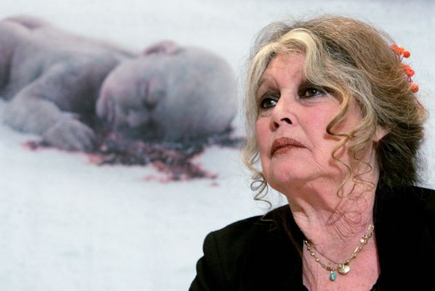 Brigitte Bardot durante un acto de protesta contra el maltrato animal en