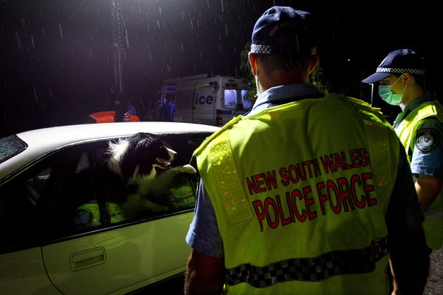 NSW police greet a dog in a vehicle stopped at the border checkpoint at South Albury as they prepare...