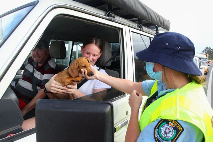 Senior Constable, Hannah Males pats a dog of Wodonga residents as they pass through the Hume Highway checkpoint at the Victorian border on November 22, 2020 in Albury, Australia ahead of the borders reopening.