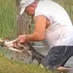 Συνταξιούχος στην Φλόριντα σώζει το σκυλάκι του από τα δόντια