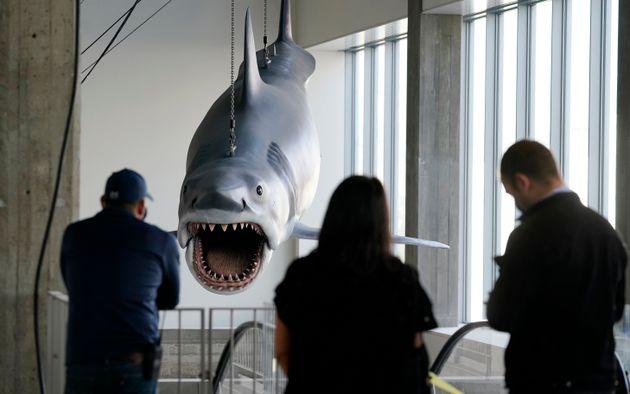 Ο καρχαρίας «Μπρους» από τα «Σαγόνια του Καρχαρία» στο Mουσείο των