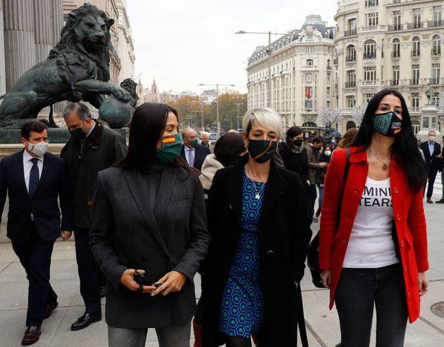 El grupo paralamentario de Vox, hoy miércoles en el Congreso de los Diputados, el día que se celebra...