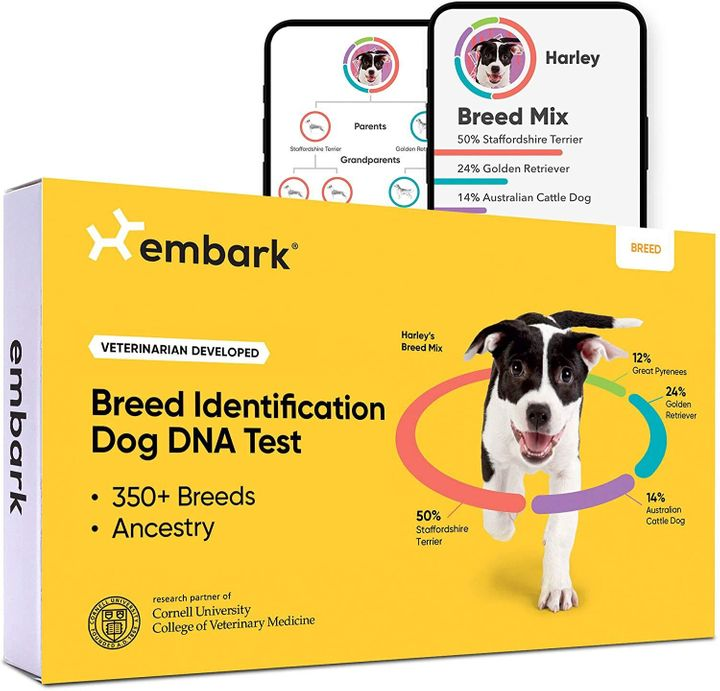 Embark dog DNA Cyber Monday deal for 2020.