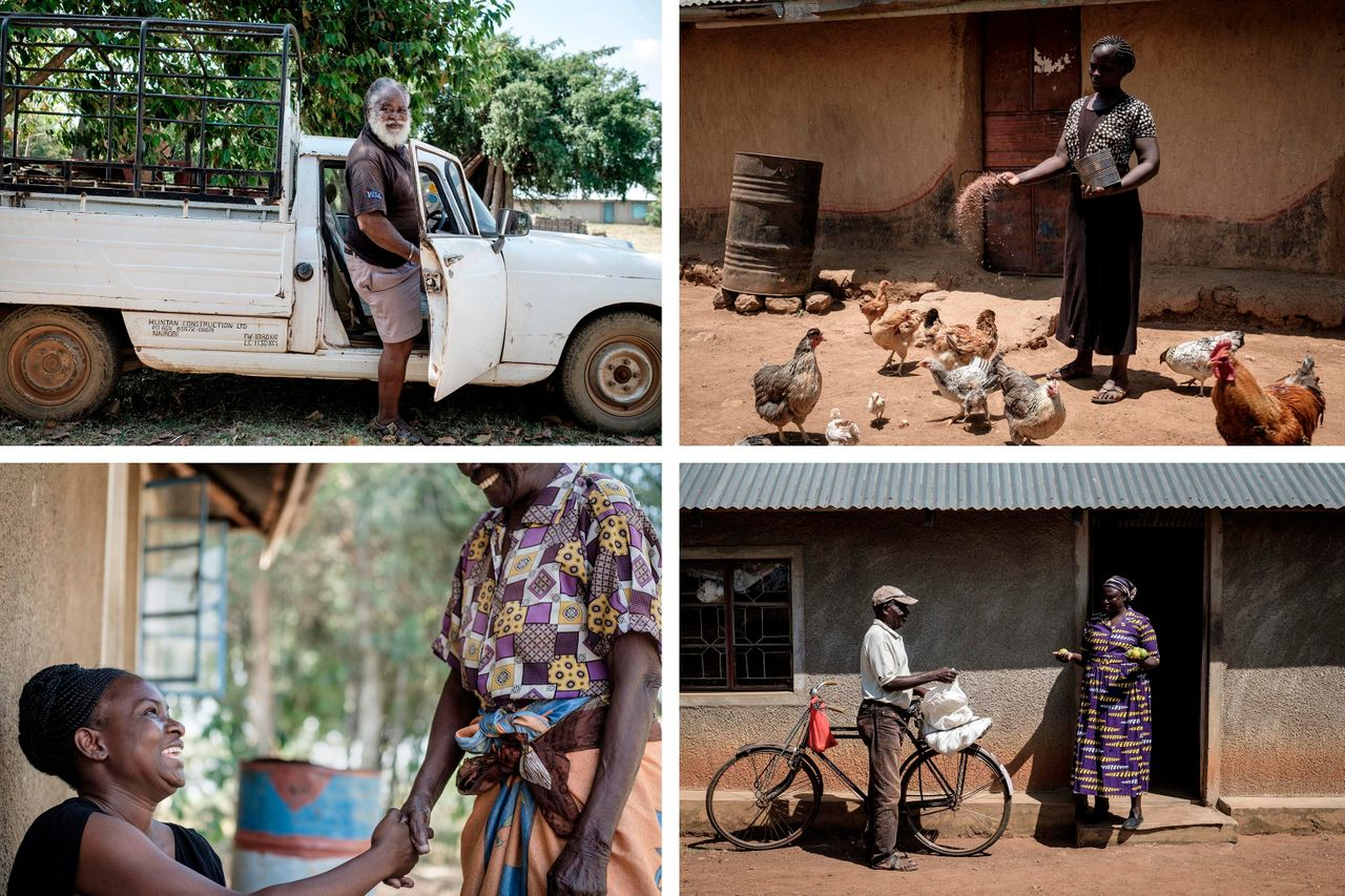 Top left: Samson, 72, gets 2,250 shillings a month ($21) as a recipient of the UBI program, which he uses for his fish farm in the Bondo region of western Kenya. Top right: Monica, 30, uses the basic income to support the poultry farm she runs with her husband. Bottom left: Caroline Teti, of the nonprofit GiveDirectly, shakes hands with a basic income recipient. Bottom right: Grace, who is 65 and retired, uses the money for treatment of her swollen leg and for buying food. Credit: Yasuyoshi Chiba/AFP/Getty Images