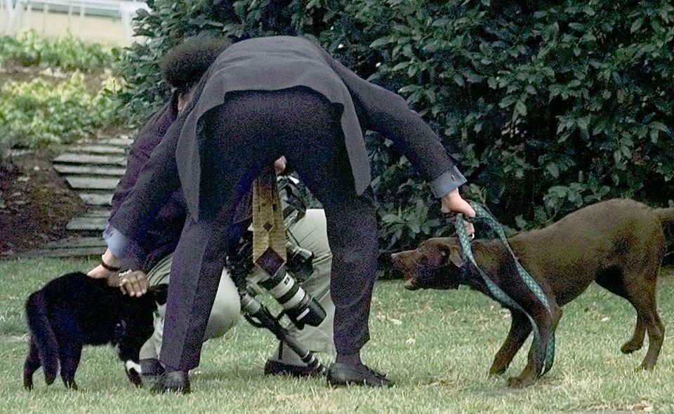클린턴의 반려동물인 삭스와 버디. 둘은 사이가 좋지