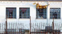 Φυλακές Λάρισας: Θετικός στον κορονοϊό ένας στους οκτώ