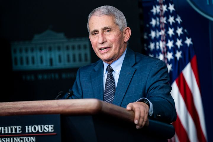 <strong>Director of the National Institute of Allergy and Infectious Diseases, Anthony Fauci.</strong>
