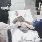 '냄새 제거'한다며 방향제 뿌린 동물병원, 동물학대
