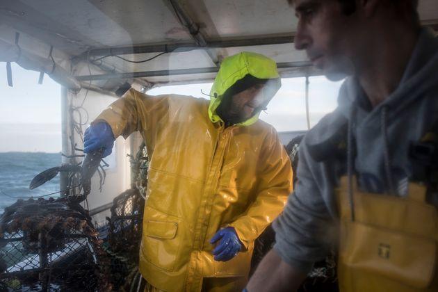 Les pêcheurs français, à l'image de ces spécialistes du homard photographiés...