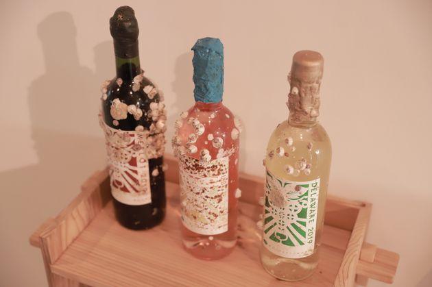 カキの養殖棚にワインボトルを括り付け、志津川湾に沈めて熟成させた「海中熟成ワイン」。通常よりも早く熟成が進むそうだ。