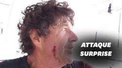 Jean Le Cam attaqué par un poisson volant sur le Vendée