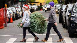 クリスマスツリー、世界各地で売り切れ続出している2つの理由。コロナが原因?なぜ