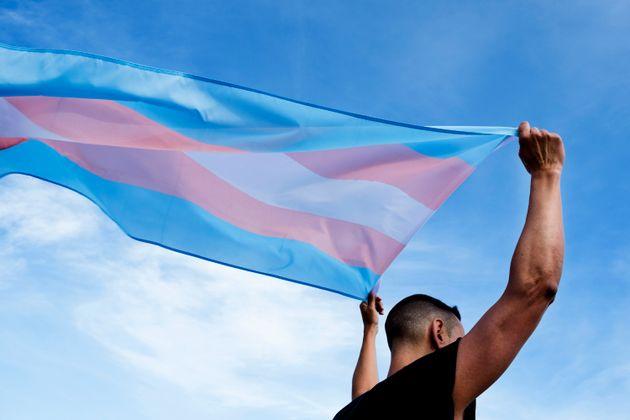 'Ley trans', una victoria del movimiento
