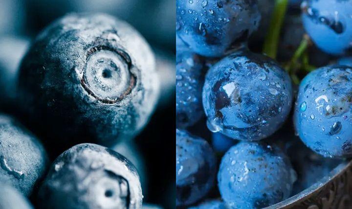 포도와 블루베리에는 기억력 개선, 인지 저하 예방에 도움이 되는 폴리페놀이 풍부하다.