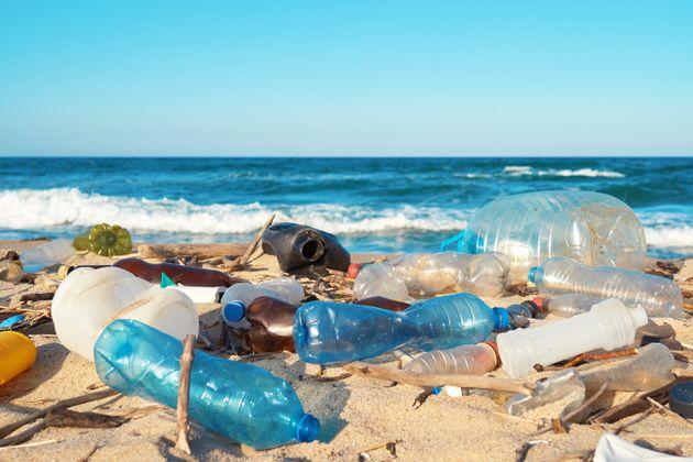 海洋プラスチックごみ