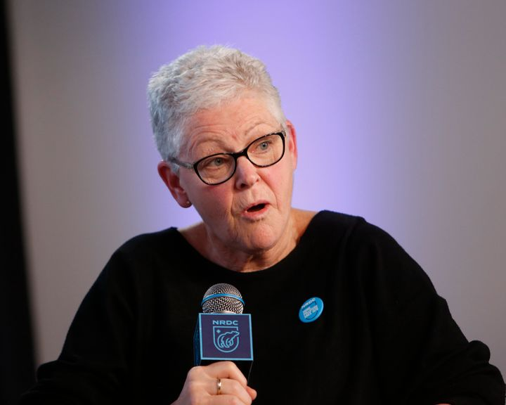 Gina McCarthy, head of the Natural Resources Defense Council, had led the Environmental Protection Agency in the Obama admini