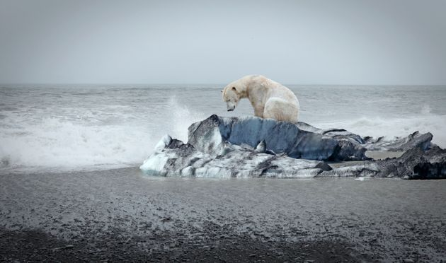 Clima: falsità e paradossi nella risposta alla
