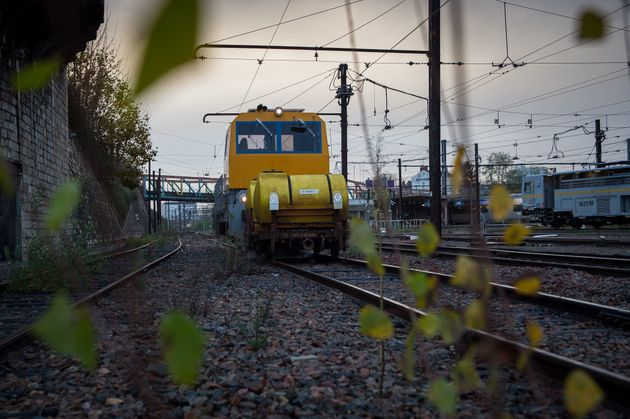 Le désherbage est un enjeu crucial pour la SNCF, qui était jusqu'à présent...