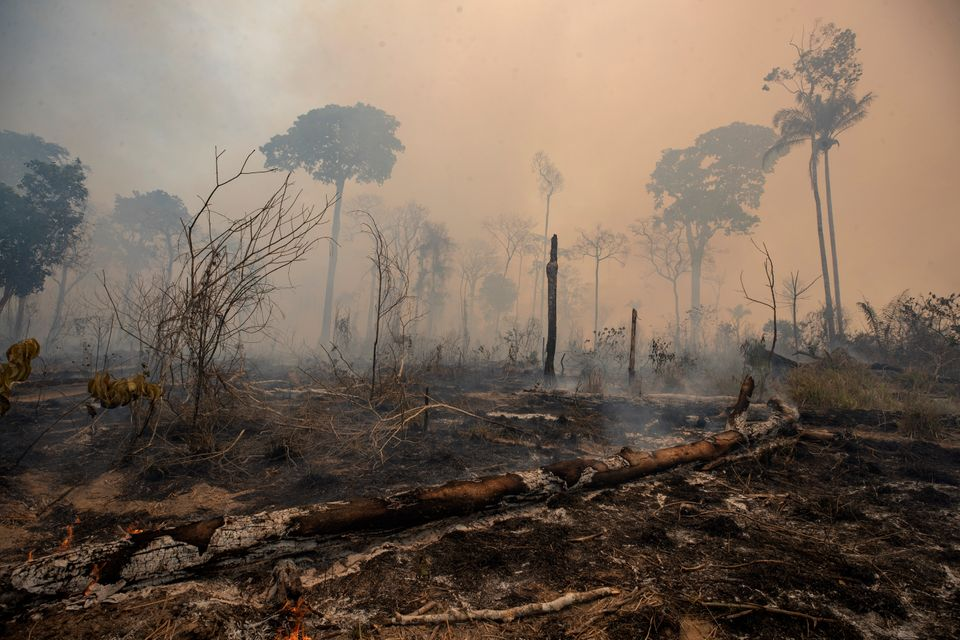 Fire consumes land deforested by cattle farmers in Para state, Brazil, on Aug. 23,