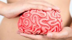 ¿Tratar las úlceras de estómago a partir del cerebro? El diálogo del estómago con el