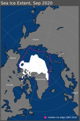 Sea ice coverage in September 2020. The purple line indicates the previous median ice coverage extent from 1981-2010.