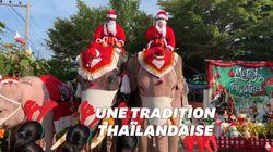 À Noël, ces éléphants déguisés provoquent la colère des défenseurs des
