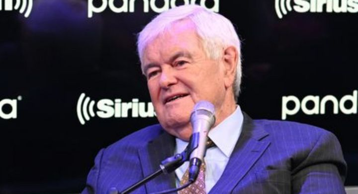 Newt Gingrich's op-ed for The Washington Examiner was a doozy.
