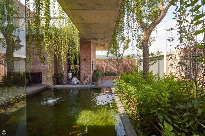 Πράσινο Κουρτίνα Σπίτι