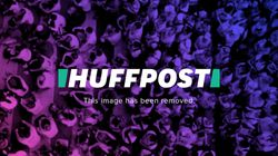 Lion Attacks Leopard On The Road And It's Over