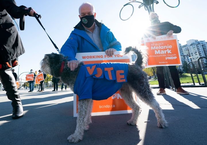 NDP Leader John Horgan stops to pet candidate Melanie Mark's dog Max as he greets supporters on election day in Vancouver on Oct. 24, 2020.