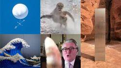 2020年の奇妙なニュース10選。仙台上空のUFO?から、世界各国にモノリス出現まで