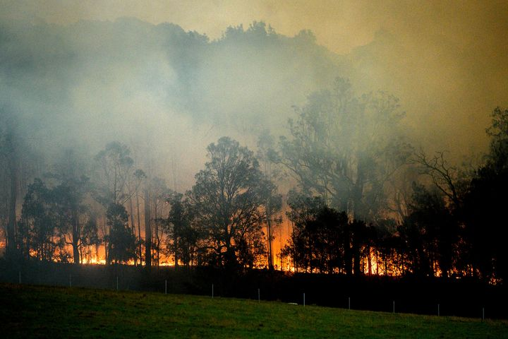 A bushfire burns in Bodalla, New South Wales, Australia, Saturday, January 25, 2020.
